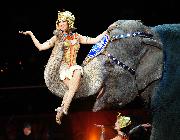 Circus Entertainment | Entertain-Ment