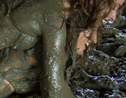 Mud Wrestling Babes for Your Stag Do | Entertain-Ment